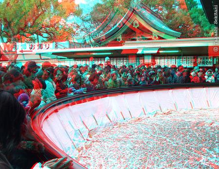 Sumiyoshitaisya_3_20110102_cana_600