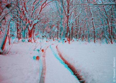 Snowroad01_ana_600