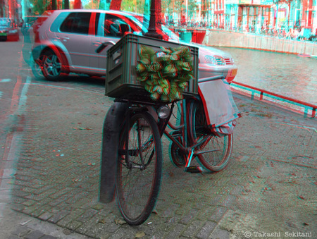 Flowerbicycle_1_cana_600
