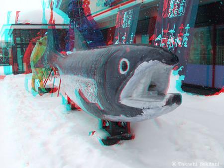 3dadva_salmon_1_cana_600