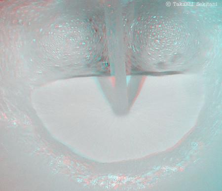 Bubbleface_1_trim_gana_600