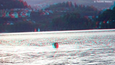 Slovenia_lakebled_002_swimmer_cana_
