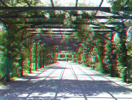 Baden_rosegarden_arch_1_cana_960