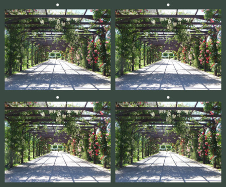Baden_rosegarden_arch_1_sbs_960