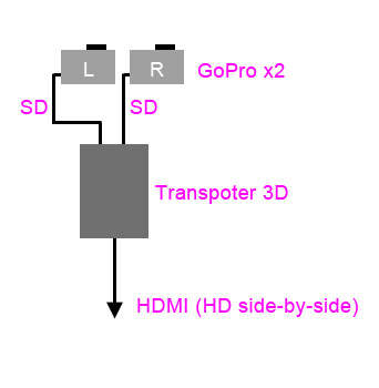 Oculus_and_transpoter3d_fig_2